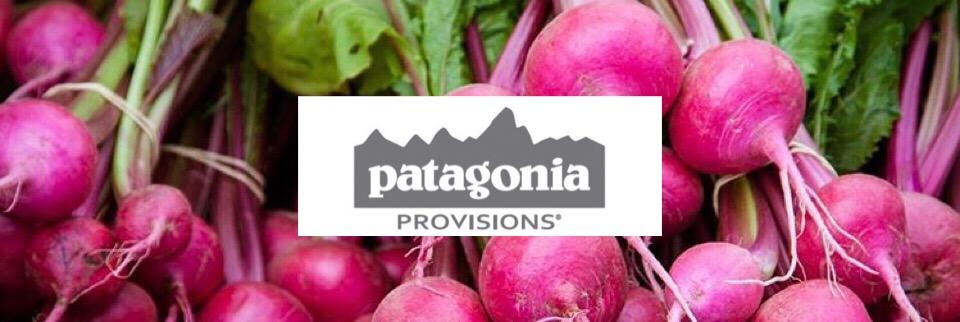 GOODDYAS STANDUP × patagonia